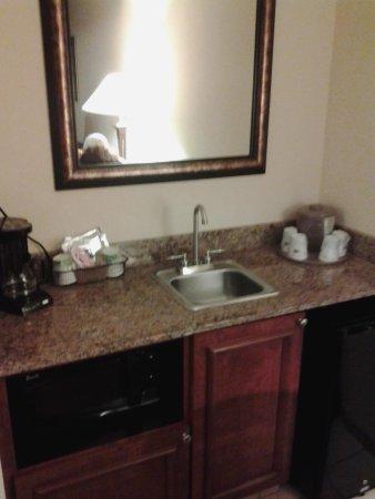 Hampton Inn & Suites Birmingham-Hoover-Galleria: aminites area
