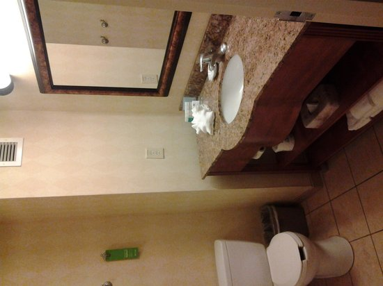 Hampton Inn & Suites Birmingham-Hoover-Galleria: bathroom