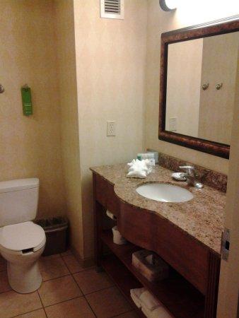 Hampton Inn & Suites Birmingham-Hoover-Galleria: bathroom