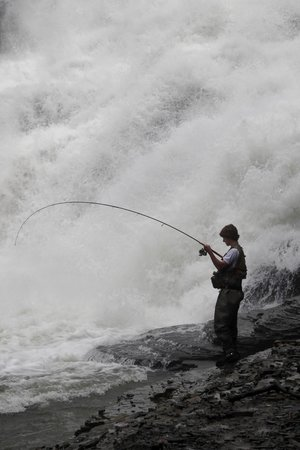 Ithaca Falls Natural Area : Fisherman at Ithaca Falls