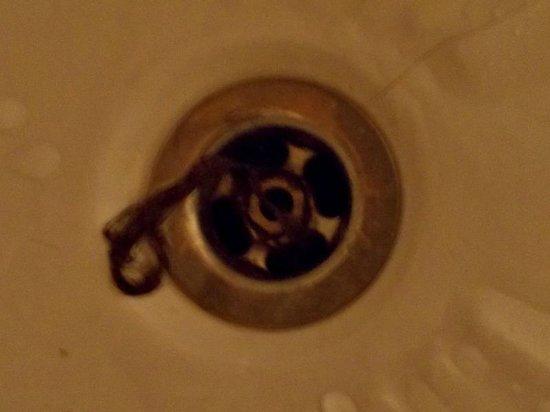 Elysees : Hair in the bath tub drain as I arrived