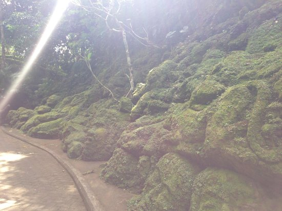 Ayung Resort Ubud: Awesome moss-covered carvings