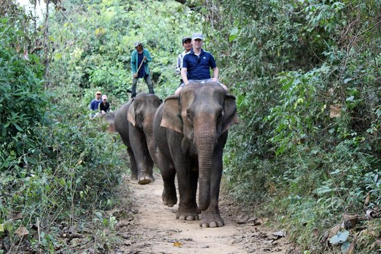 Elephant Village Sanctuary Day Trips: Me and my friend