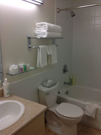 Coast Fraser Tower : Extra toiletries were provided, such as shower caps and mouth wash.