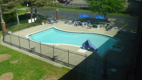 Quality Inn Auburn Hills: pool
