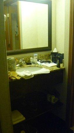 Quality Inn Auburn Hills: sink