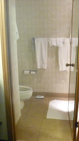 Quality Inn Auburn Hills: bathroom