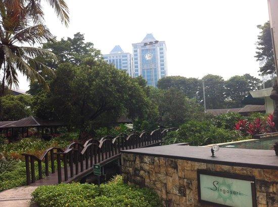 Hotel Borobudur Jakarta : Garden