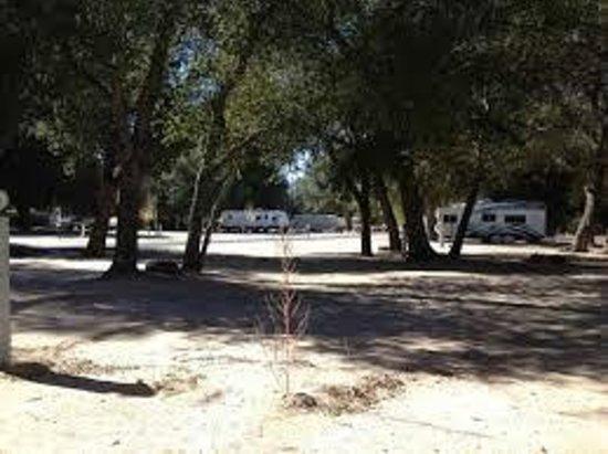 The Oaks at Sacred Rocks RV Park : Nice open sites!