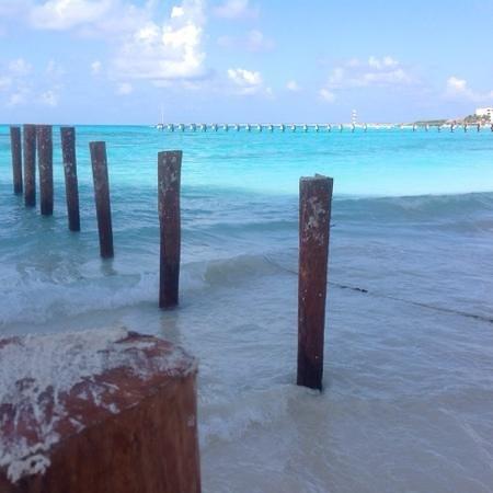 playa caracol 2014