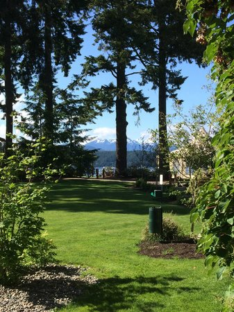 Alderbrook Resort & Spa : From our room's patio