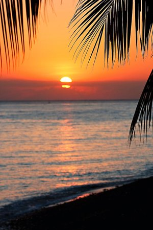 Poinciana Oceanside Resort & Retreat Centre: paradise