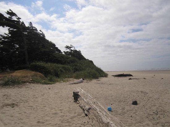 Schooner's Cove Inn: beach view from outdoor area