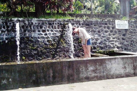 Tirta Gangga: Священные воды Ганга
