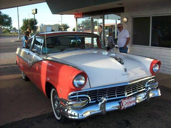Motel Safari: Classic Cars