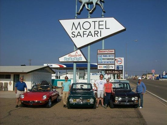 Motel Safari: Car Clubs