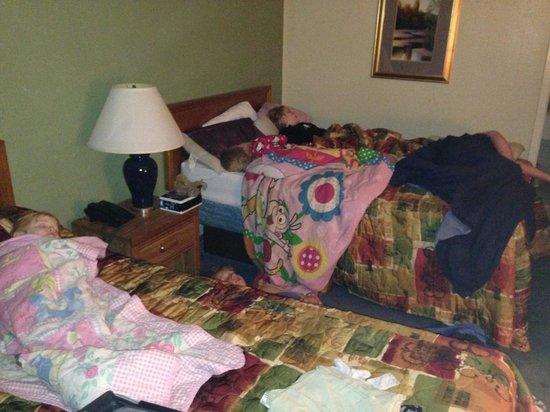Luxury Inn and Suites: Regular room view.