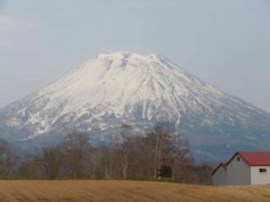 Mt. Yotei : 羊蹄山