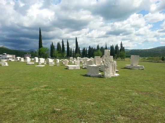 Stolac, Bośnia i Hercegowina: necropolis Radimlja