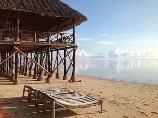 Ngalawa Beach Village : The Deck by the beach.