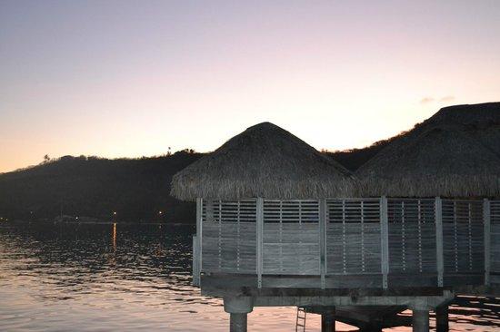 Sofitel Bora Bora Marara Beach Resort : one of the rooms