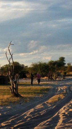 Elephant Sands Botswana: Campsites