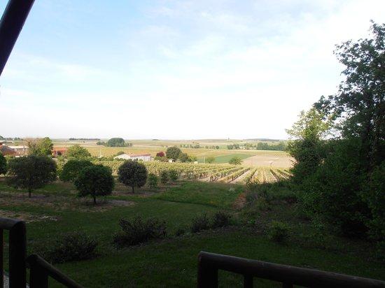 L'Abri Des Chenes: Un cadre reposant au coeur du vignoble...
