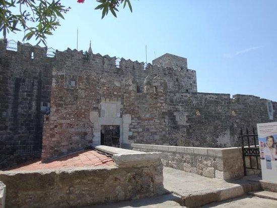 Castle of St. Peter : Вход в замок