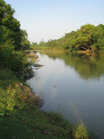 Ayurveda Yoga Villa: riverside