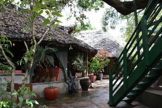 Fig Tree Camp : メインダイニングルームとバーの建物