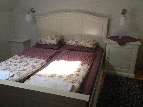 Stari Tisler: Room 1005