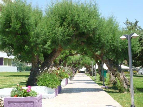 Esperides Beach Family Resort: espaces vert