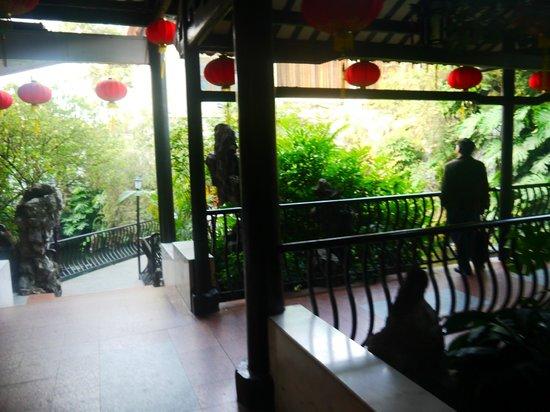 LiZhi Wan Yong : Beautiful Scenery
