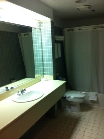 Metro Plaza Hotel: Generous sized bathroom