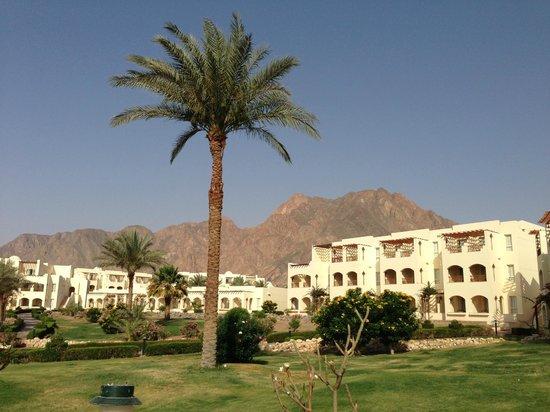 AquisTaba Paradise Resort: Территория отеля