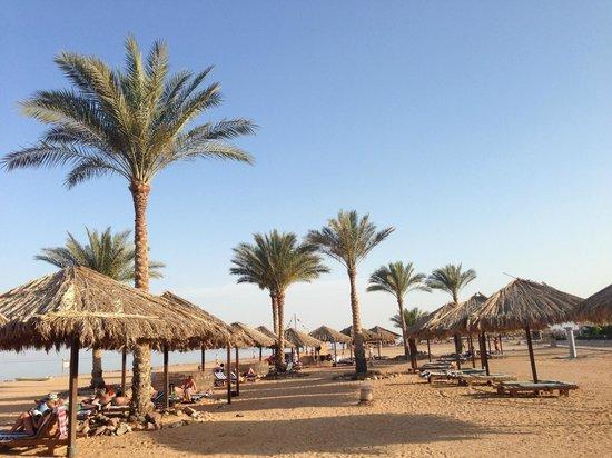 AquisTaba Paradise Resort: пляж