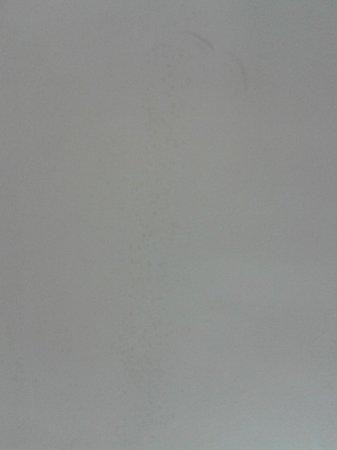 Hotel Villa del Cardinale : Muro con evidenti macchie di muffa