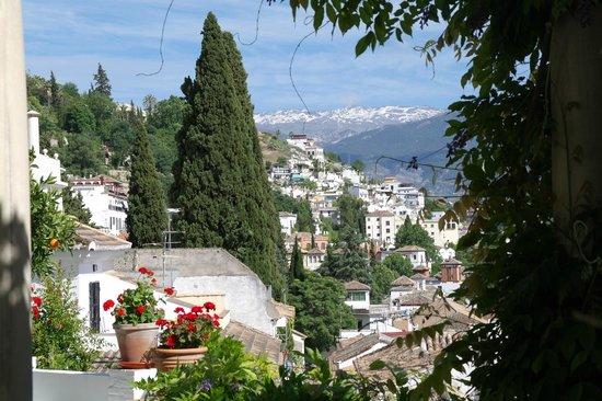 Carmen de la Alcubilla del Caracol: vue depuis notre chambre