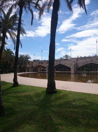 Valencia Mindfulness Retreat: Wandeling door de oude rivierbedding.