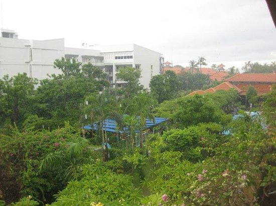 Febri's Hotel & Spa : green cover at febris and slight morning drizzle