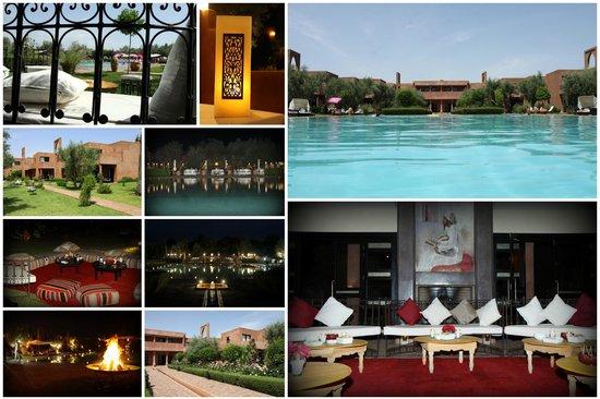 Les Jardins de Zyriab Resort & Spa : patchwork d'ambiance