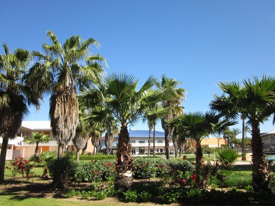 PortAventura Hotel Caribe: View from terrace