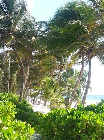 Cabanas Tulum : di fronte alle Cabanas