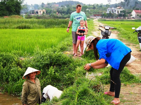 Phong Nha Farmstay: Out in the fields