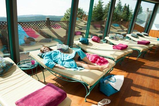 Spirit & Spa Hotel Birkenhof am Elfenhain (Ferienhotel Birkenhof KG): Ruheraum