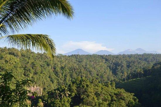 Ayung Resort Ubud: Breakfast view