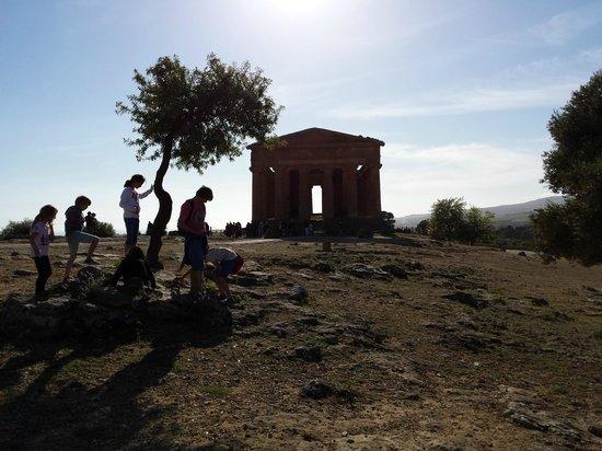 Valley of the Temples (Valle dei Templi): Veduta