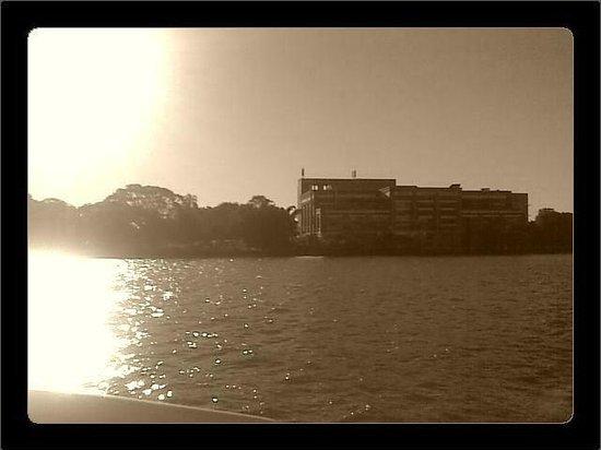 CityCat Ferry : Brisbane Powerhouse New Farm