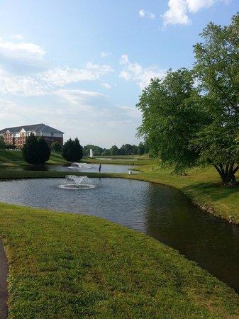 Hilton Garden Inn Charlottesville: ponds