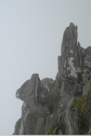 Ben Lomond: Dog and Snake in stone